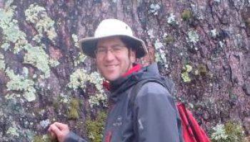 El uso del modelamiento espacio-temporal multi-objetivo en la gestión forestal para evaluar los efectos del cambio global en el suministro de servicios ecosistémicos.