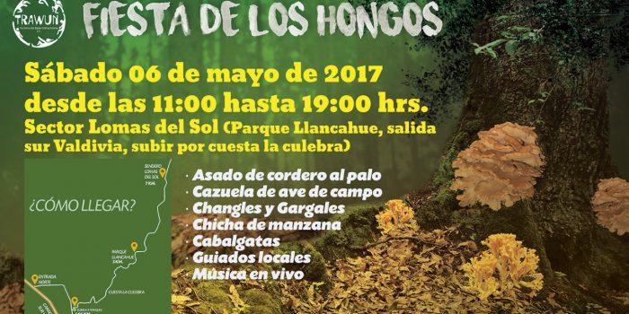 Invitan a Fiesta de los Hongos en sector Lomas del Sol