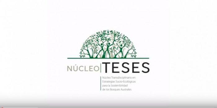 Trabajo audiovisual explica el quehacer del Núcleo de Investigación TESES
