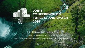 Investigadores y profesionales de todo el mundo se reunirán en Congreso enfocado al bosque y el agua